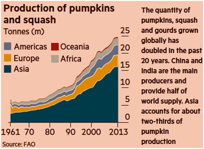 Production of pumpkins and squash