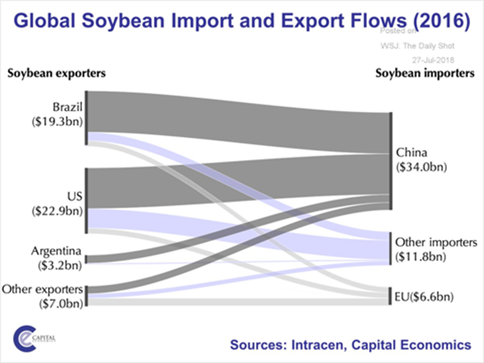 Global soybean import and export flows (2016)