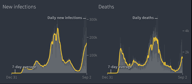 New Infections & Deaths